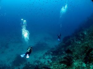 diving villefranche sur mer
